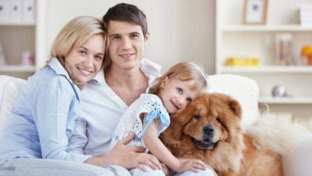Wills & Trusts dog-young-family Direct Wills Stotfold